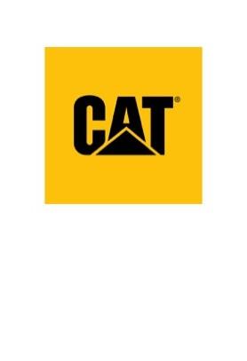 CAT LOGO 2